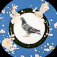 Evan Burnette, 'Commemorative Pigeon Plate #1'